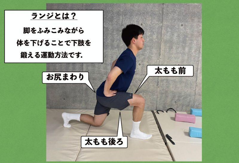 ランジで意識する筋肉の図解